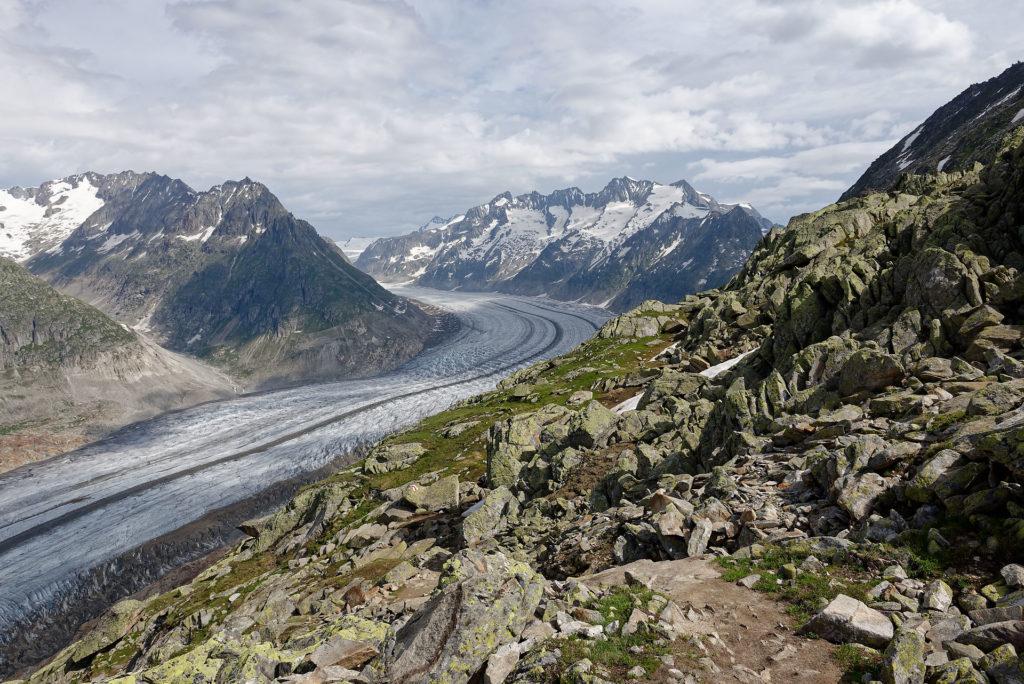 Roches, lichens et glacier d'Aletsch