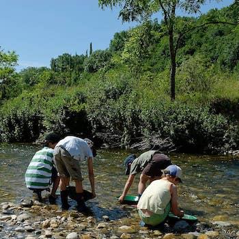 Excursion géologique à la recherche de l'or de l'Allondon