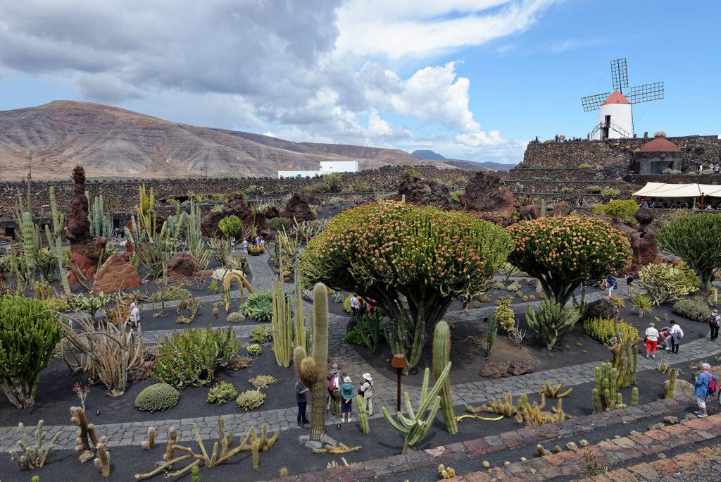 Jardin des cactus de Cesar Manrique