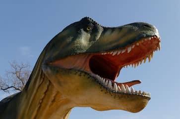 Anniversaire enfant Geneve dinosaures