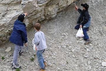 Anniversaire enfant fossiles