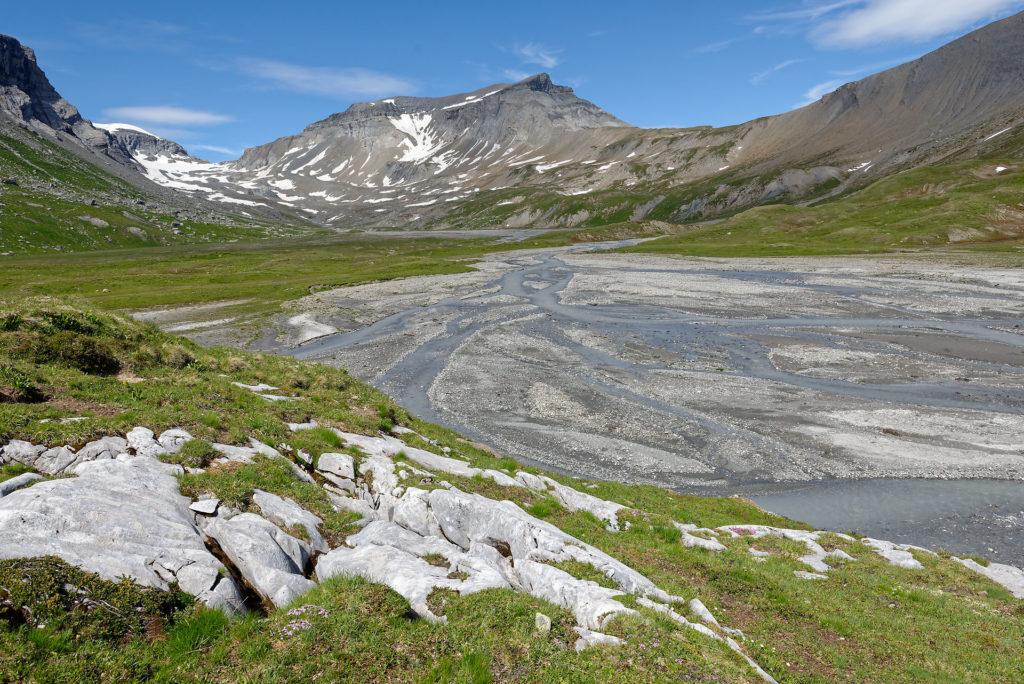 Zone alluviale d'altitude Segnas Sura