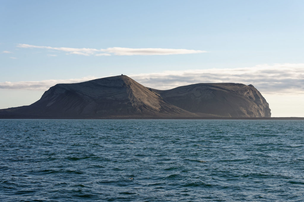 Ile de Surtsey, Vestmann